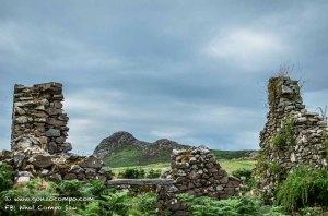 Maes Y Mynydd #11-0871