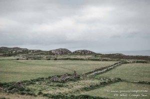 Maes Y Mynydd #12-0908