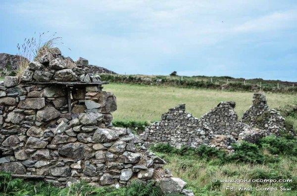 Maes Y Mynydd #4-0706