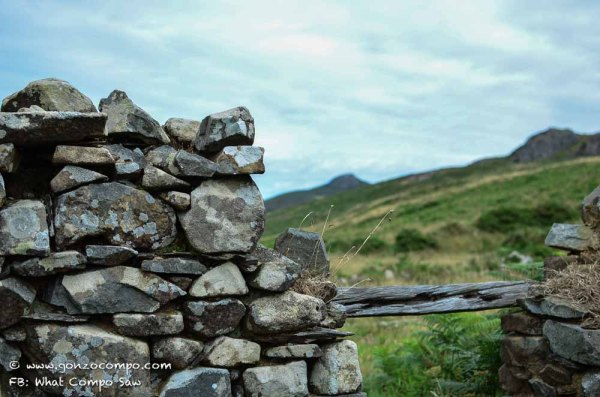 Maes Y Mynydd #8-0761