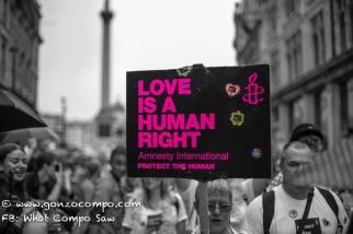 London Pride #191