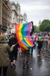 London Pride #55